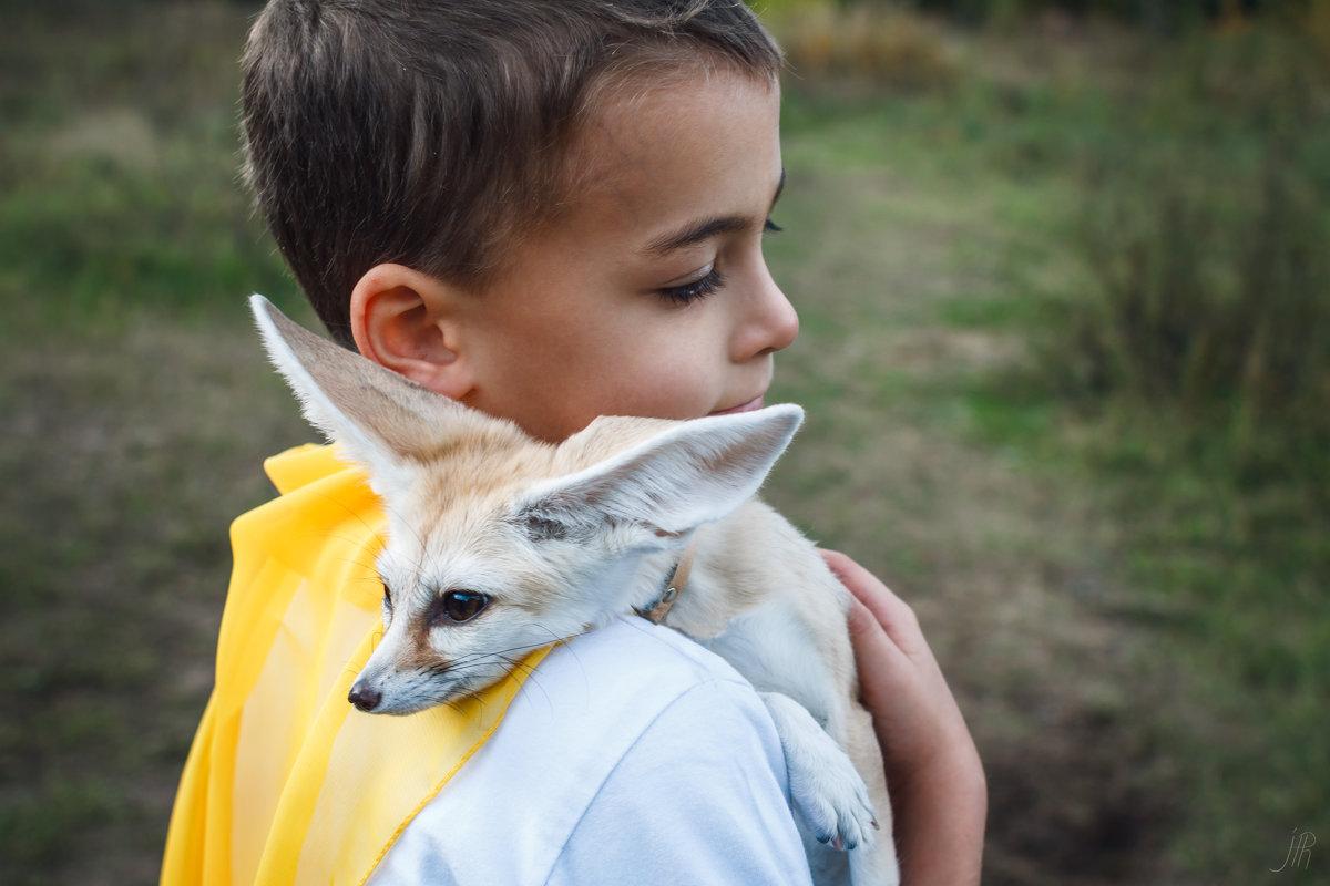 Le petit prince - Александра Реброва