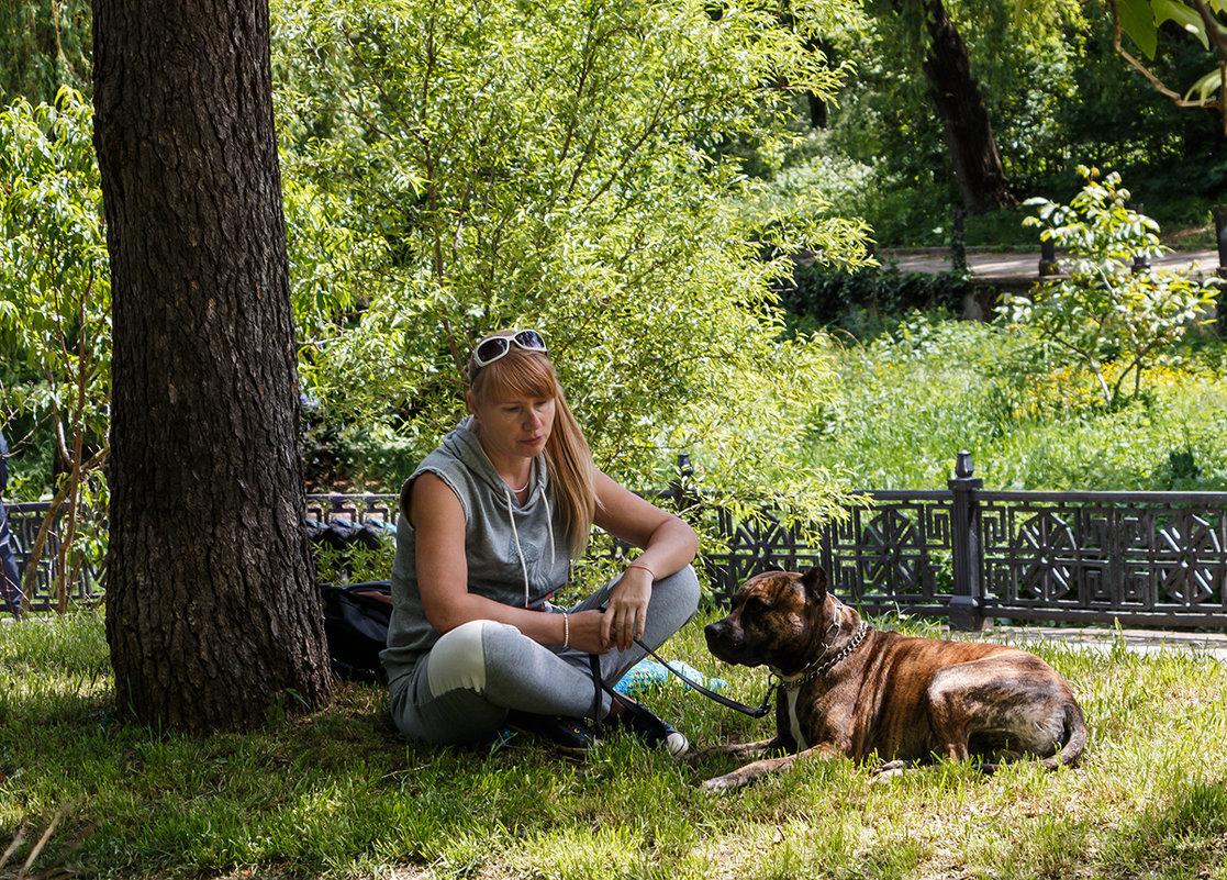 Я погрущу в тени вместе со своей собачкой... - Юрий Яловенко