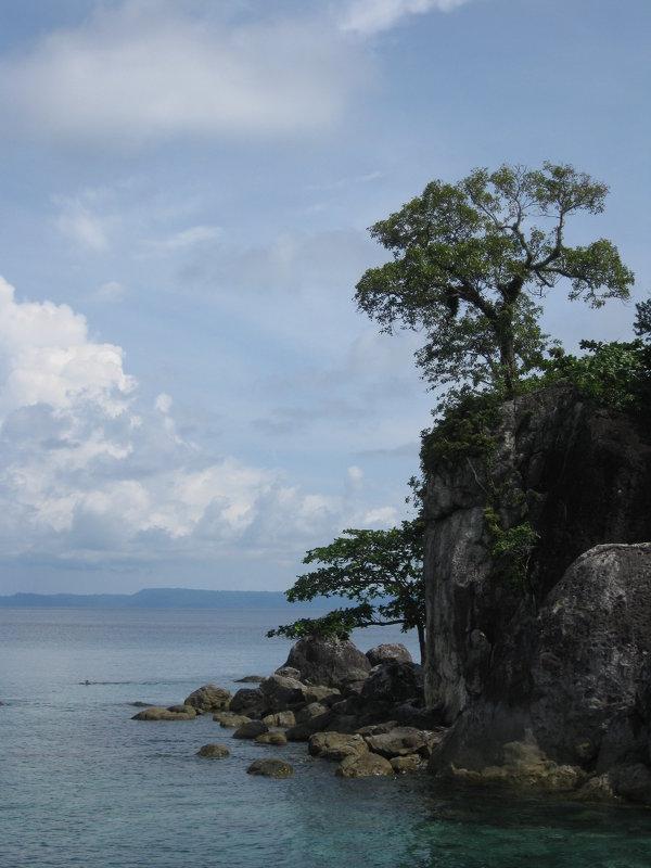 У берегов Южно-Китайского моря - Лариса (Phinikia) Двойникова
