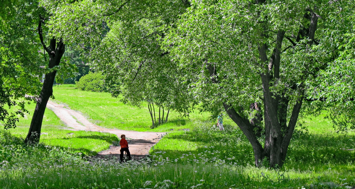 Отдельный ( нижний ) парк - Олег Попков