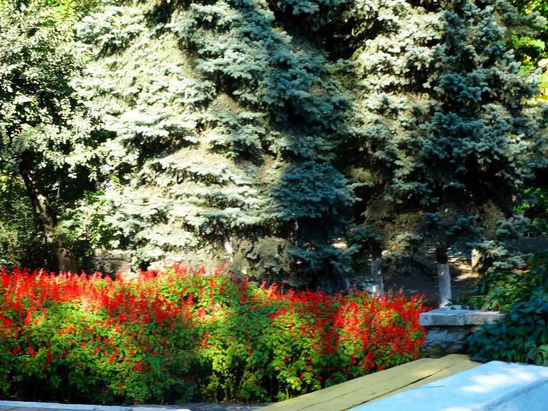 Костёр в осеннем парке... - Тамара (st.tamara)