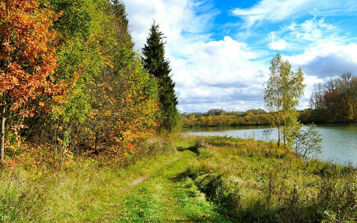 Осенний пейзаж - Милешкин Владимир Алексеевич