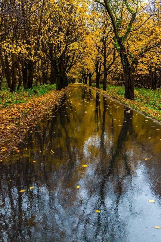 Осень - Lucky Maloy