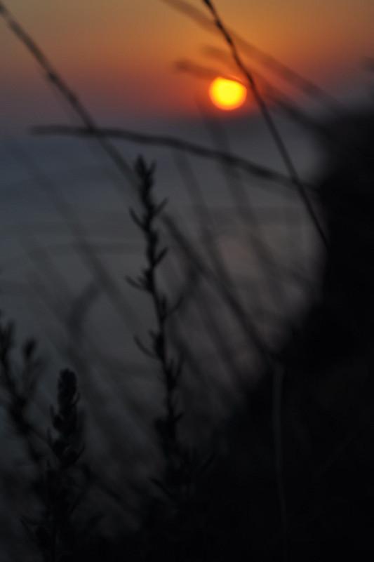 закат - Александра Невзорова