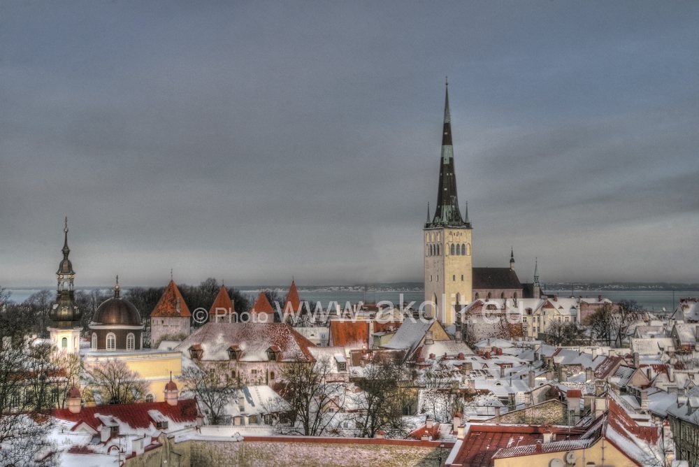 Fotostudio Akolit,Tallinn - Аркадий  Баранов Arkadi Baranov