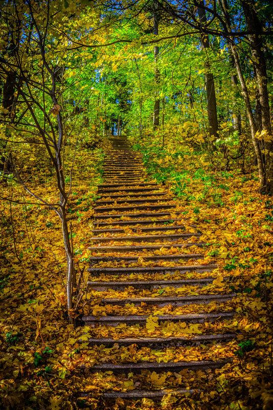 Лестница в небеса - Rassol Risk
