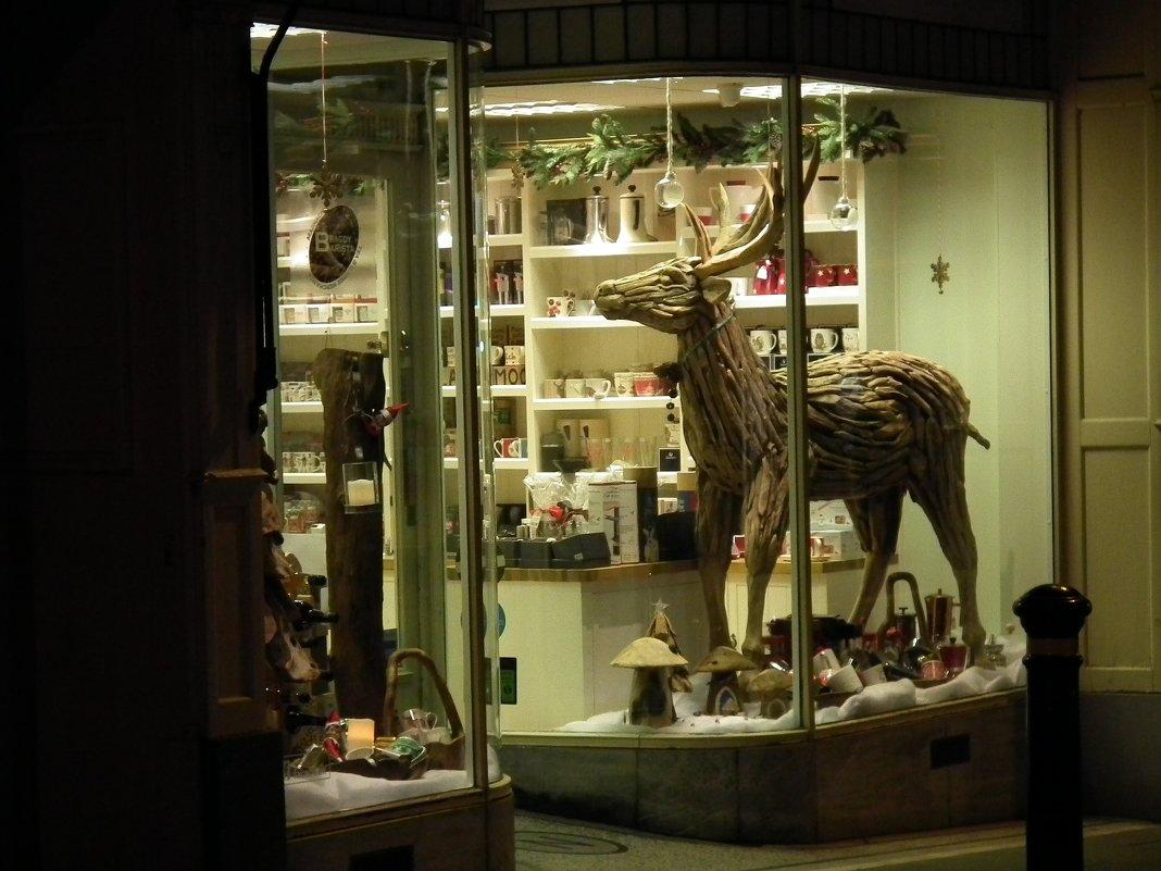 Скульптура оленя в витрине - Natalia Harries