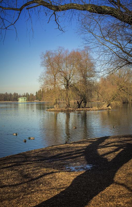 Гатчинский парк - Наталья Ерёменко