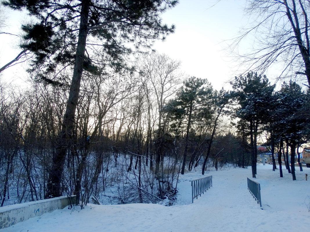 В город пришла зима... - Тамара (st.tamara)