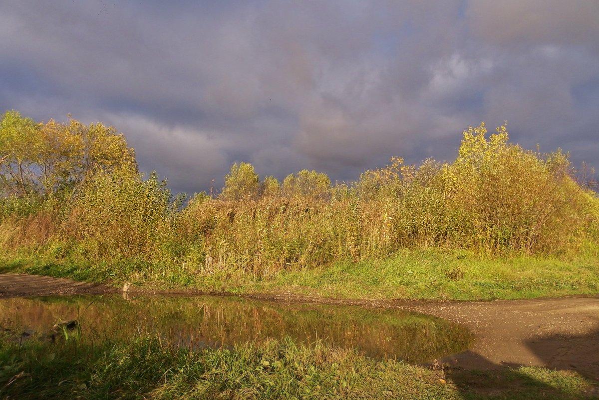 Луч перед дождем , - Святец Вячеслав
