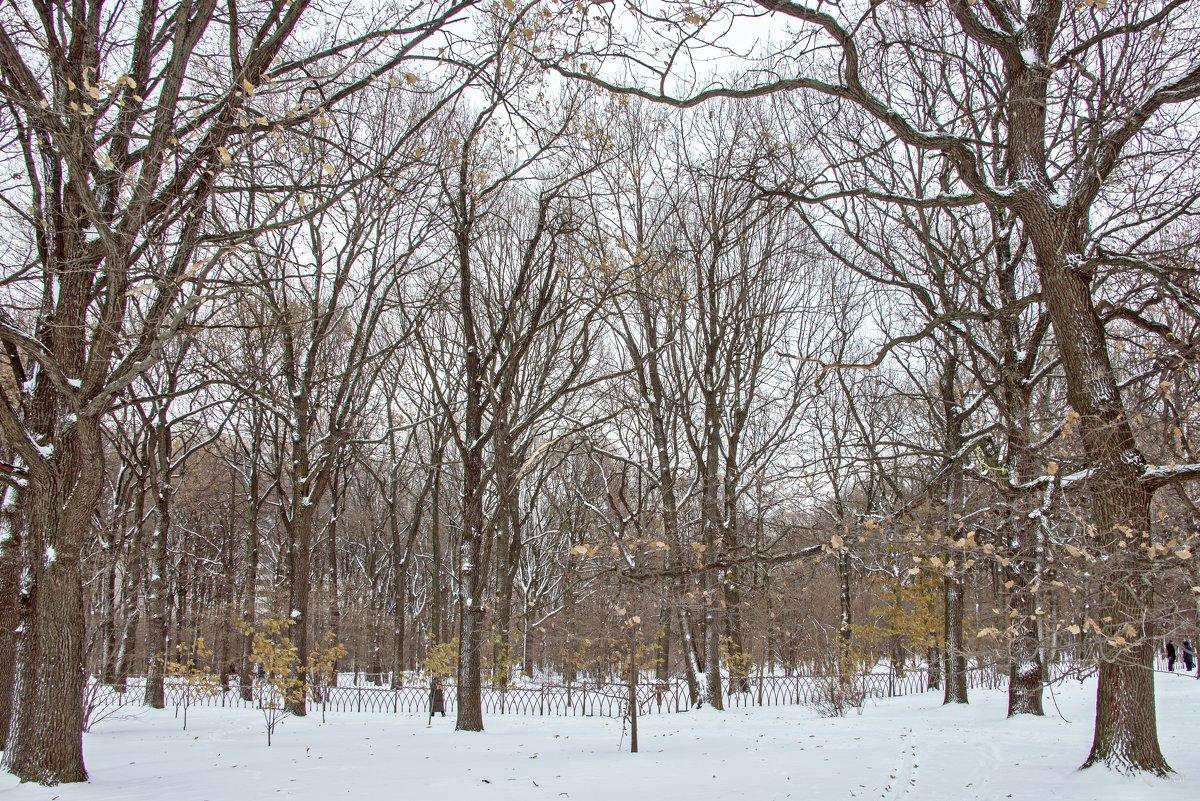 Зимнее время ... - Kirill