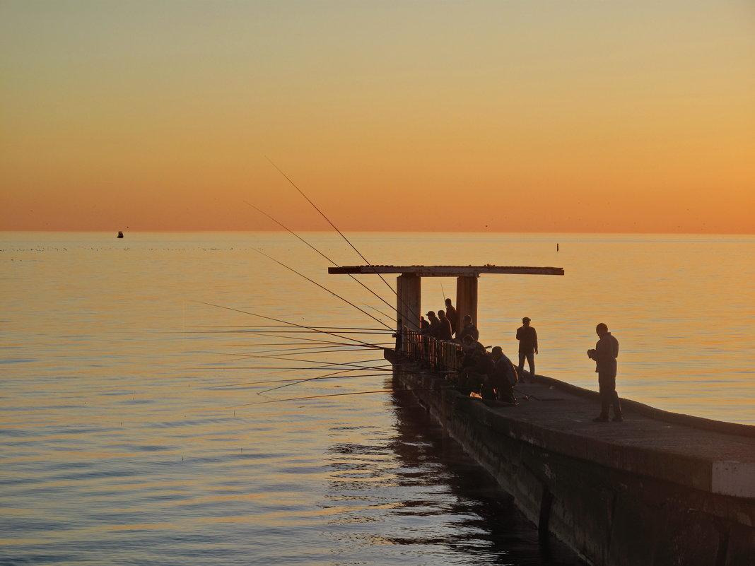 Ловись рыбка золотая... - Ева Такус