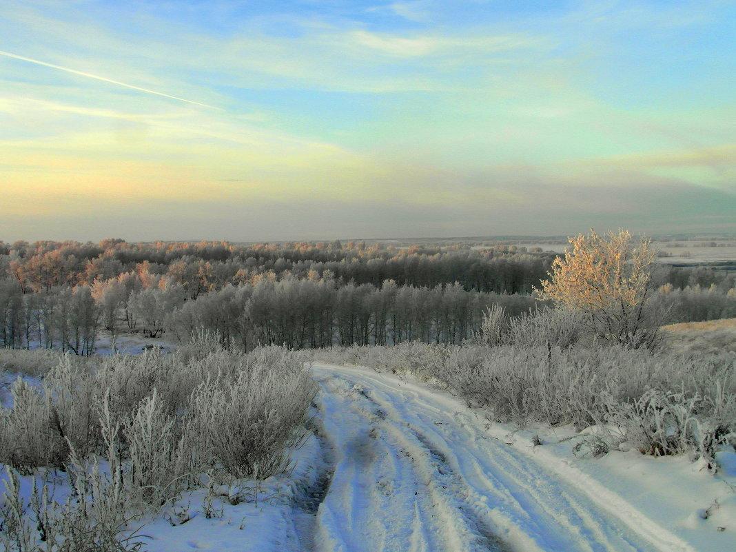 Утро зимнее. - nadyasilyuk Вознюк