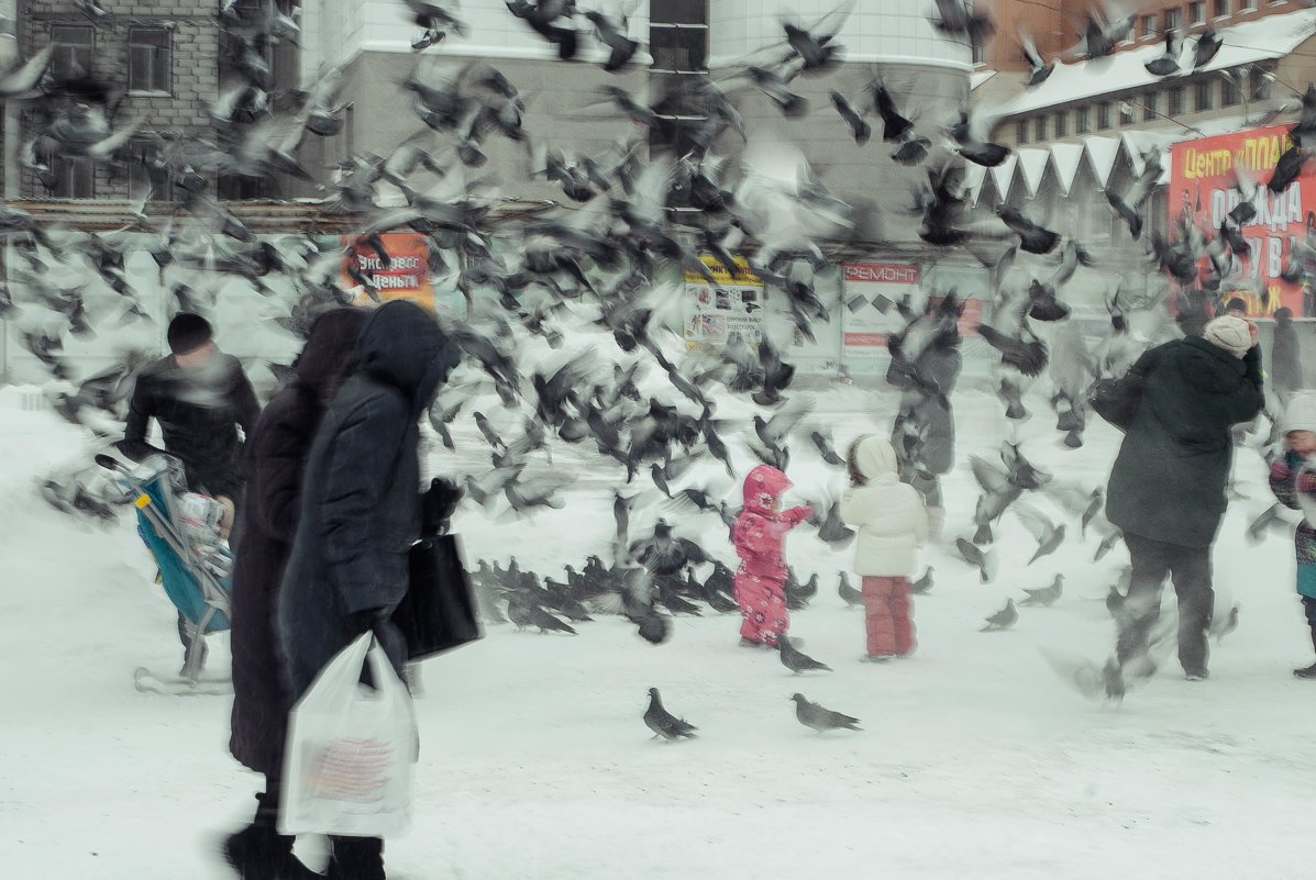 Голубиная буря - Evgenija Enot