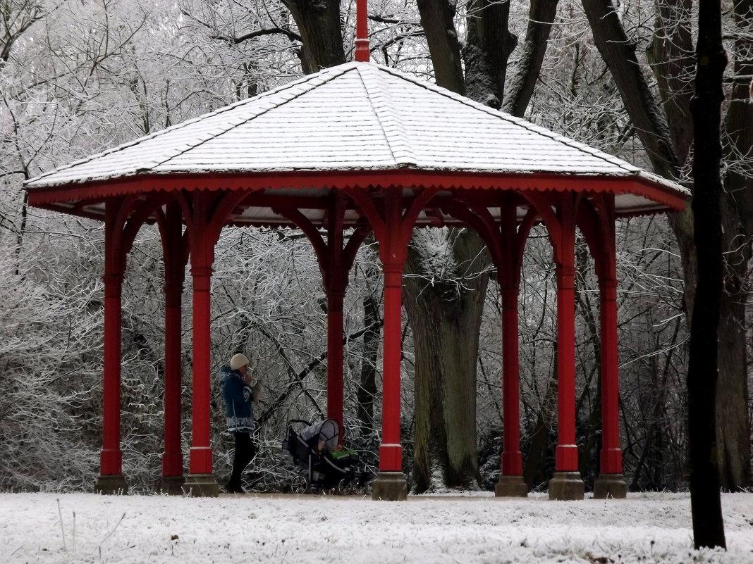 Прогулка в парке - Эдвард Фогель