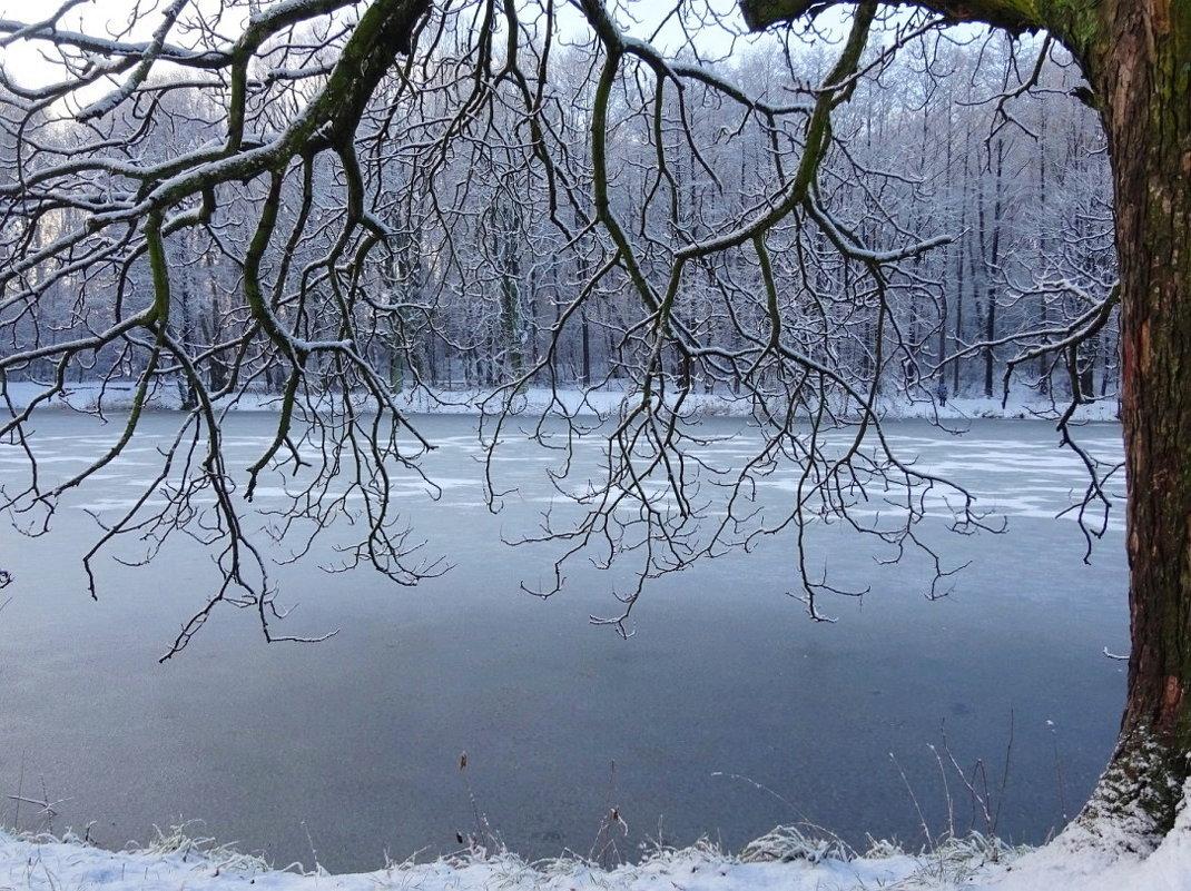 В парке зимой - Маргарита Батырева
