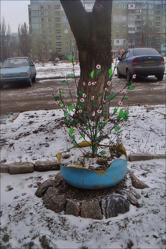 С мечтой о весне... - Нина Корешкова