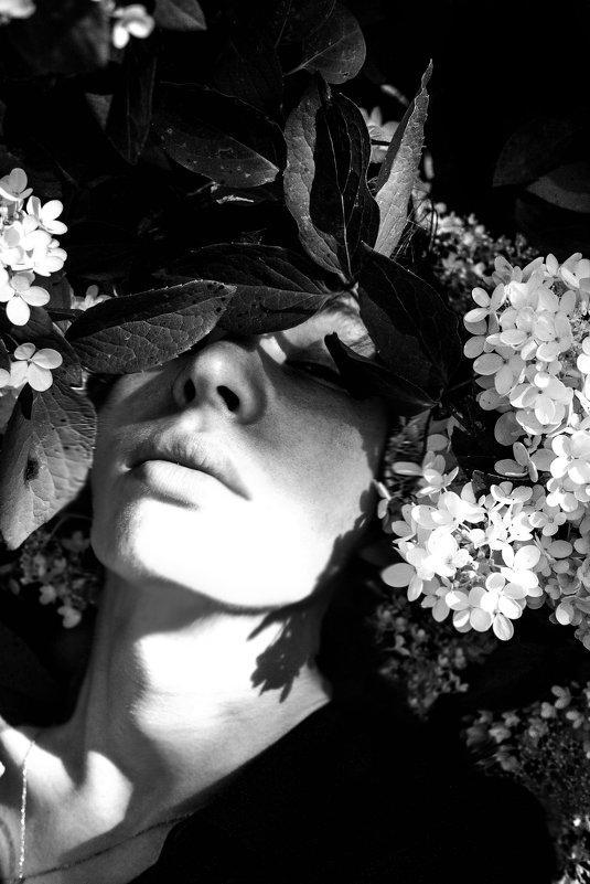 Flower World - Света Гончарова