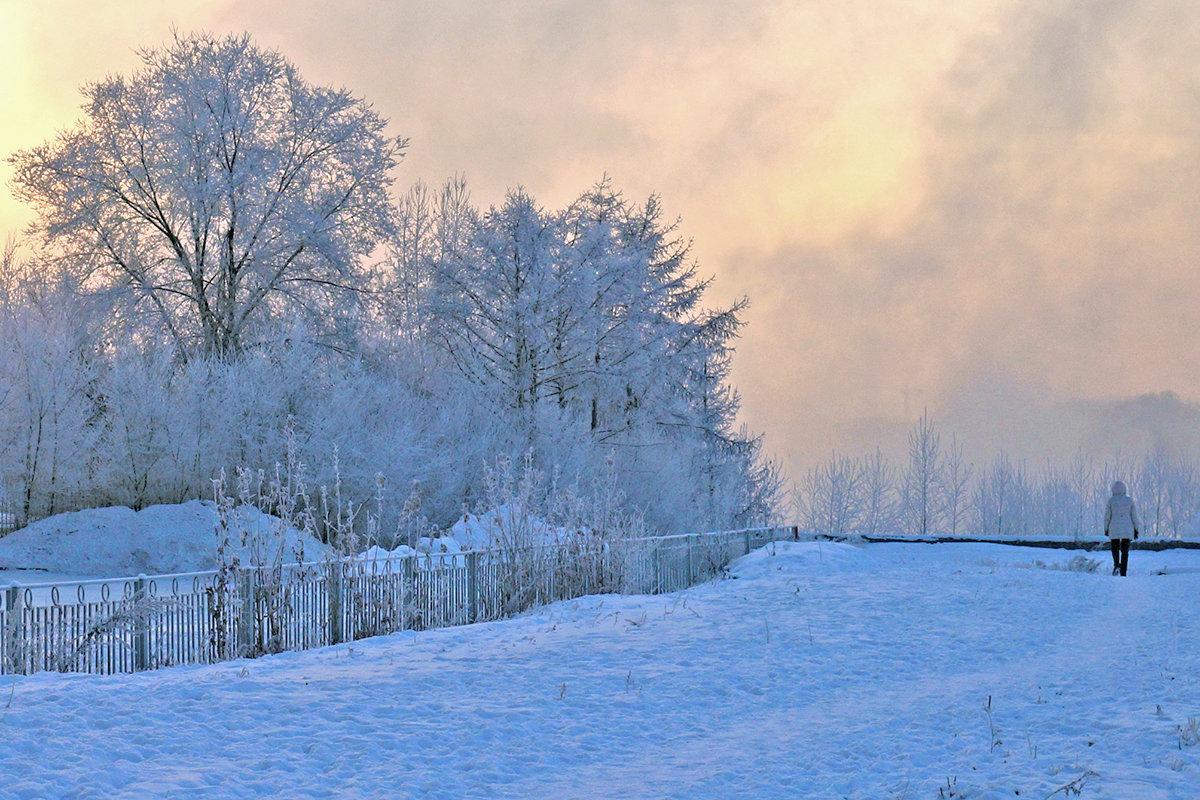 Сиреневые сумерки декабря - Екатерина Торганская
