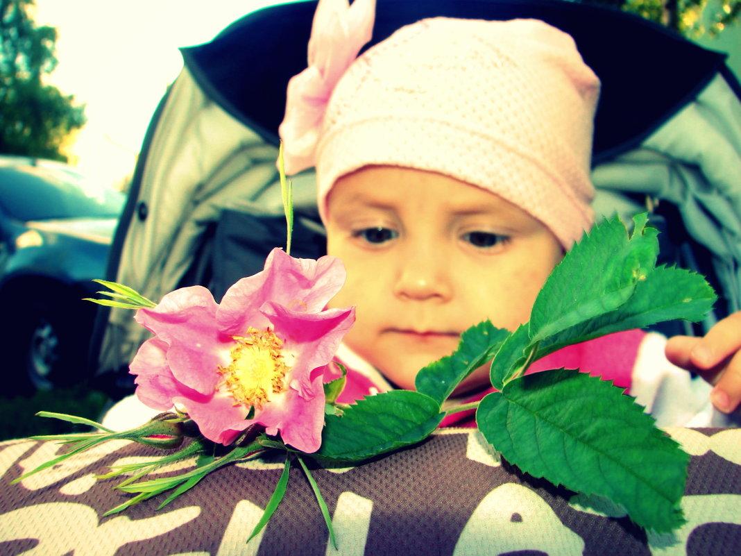 цветок жизни - руслан морквин