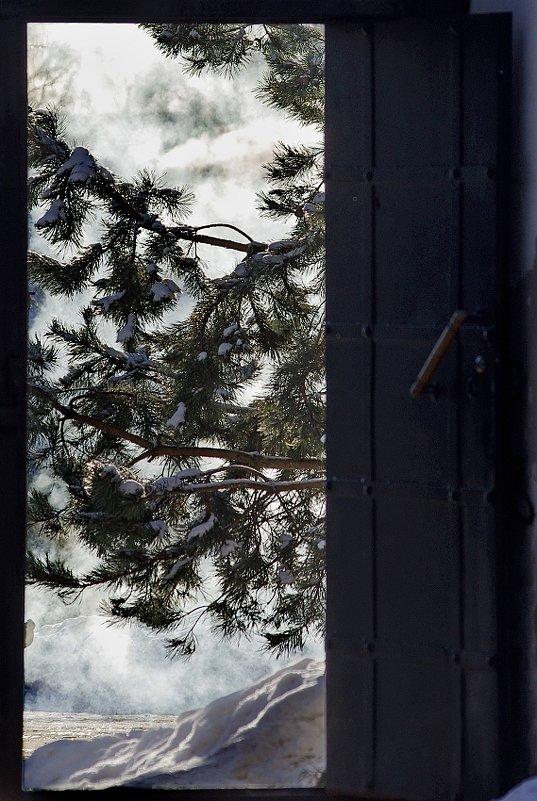 Выгляни за дверь... - Игорь Суханов