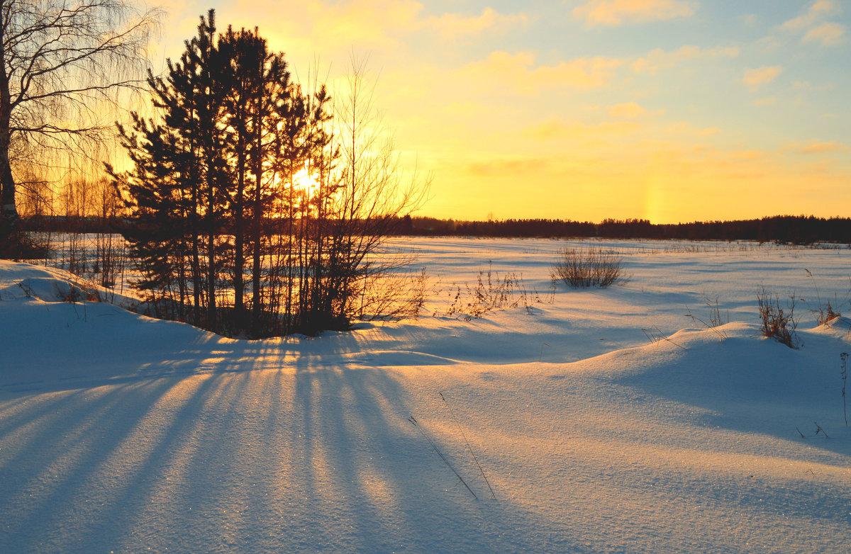 Морозный день - Екатерина Булыгина