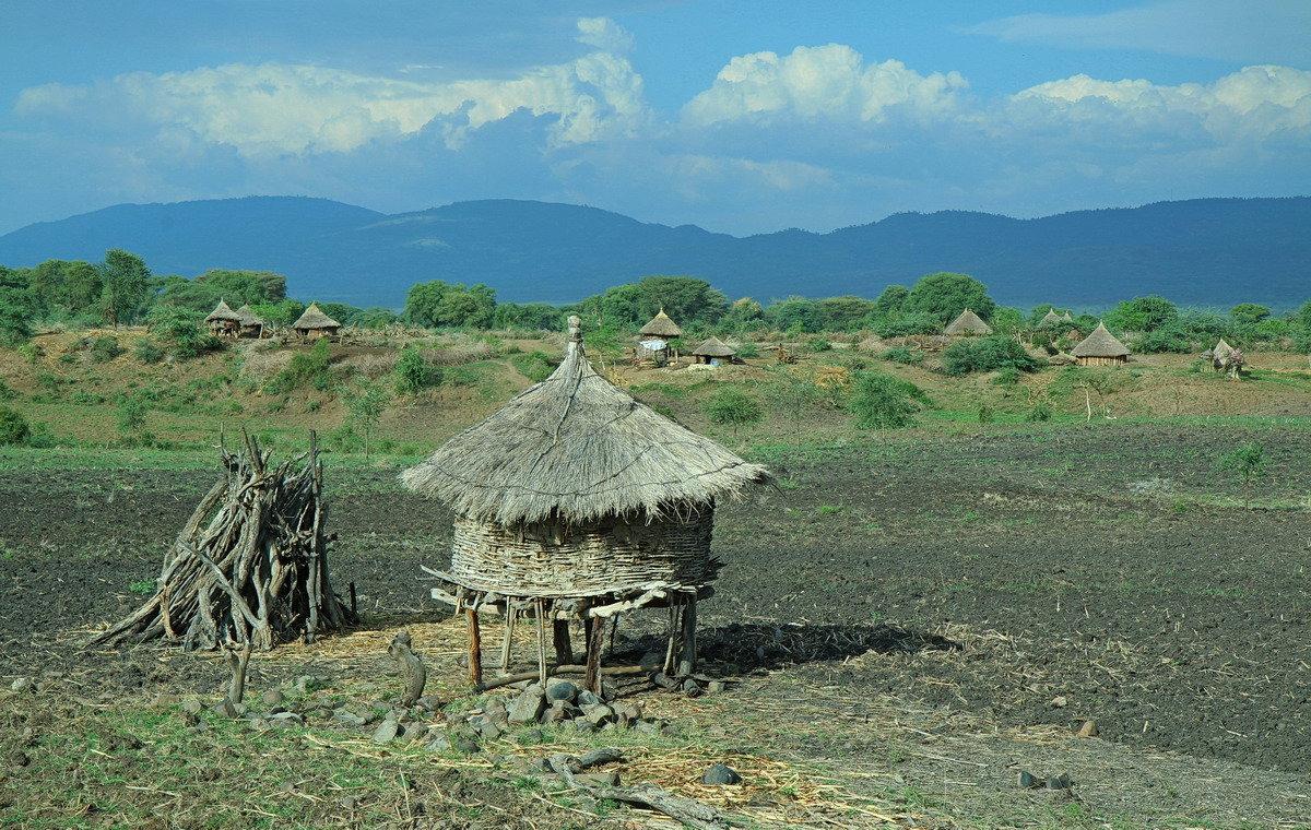 Вот моя деревня вот мой дом родной... - Евгений Печенин
