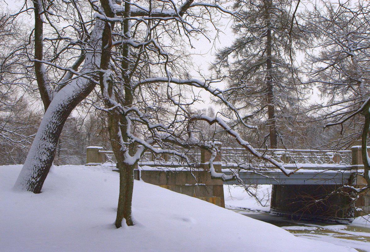 У мостика - Наталья
