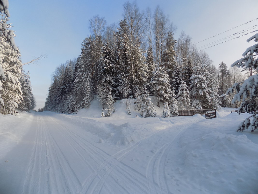 Зима - Андрей .