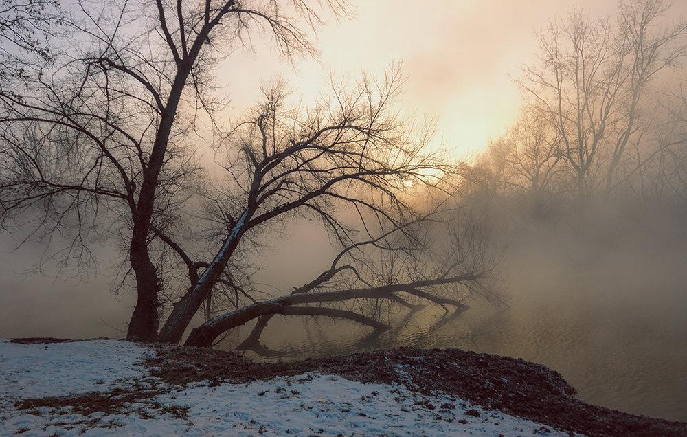 Туман - Ирина Лядова