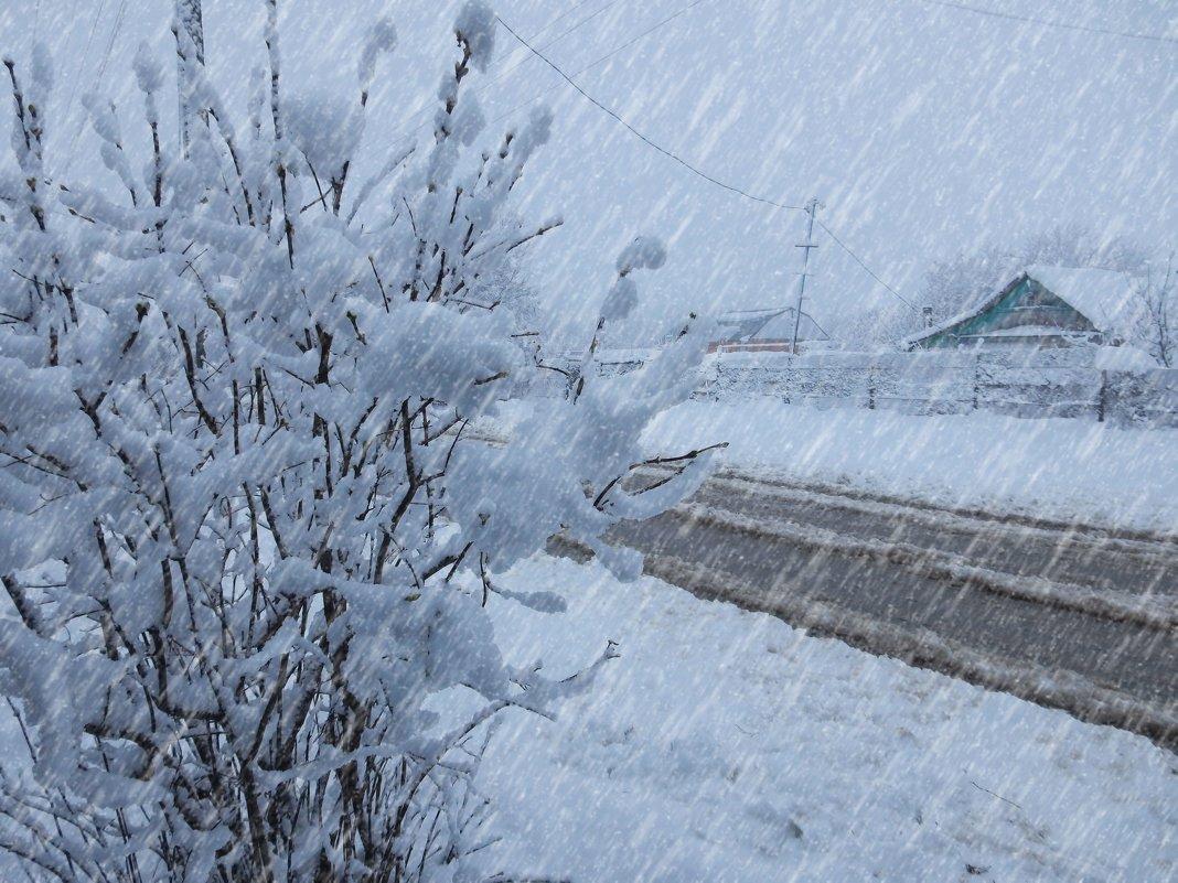 Снегопад - Владимир