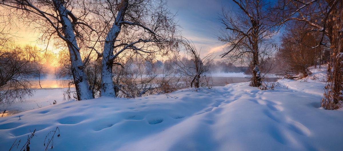Однажды,в студеную зимнюю пору...© - Roman Lunin