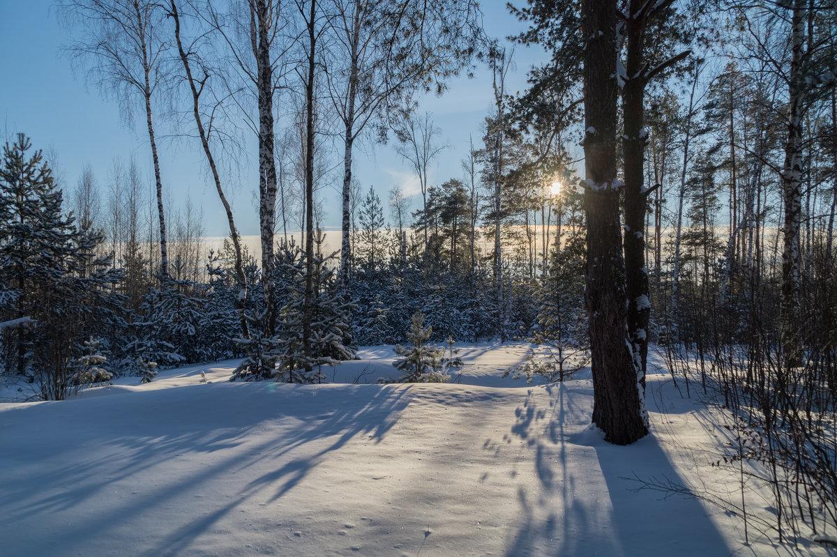 Мороз и Солнце 3 - Андрей Дворников