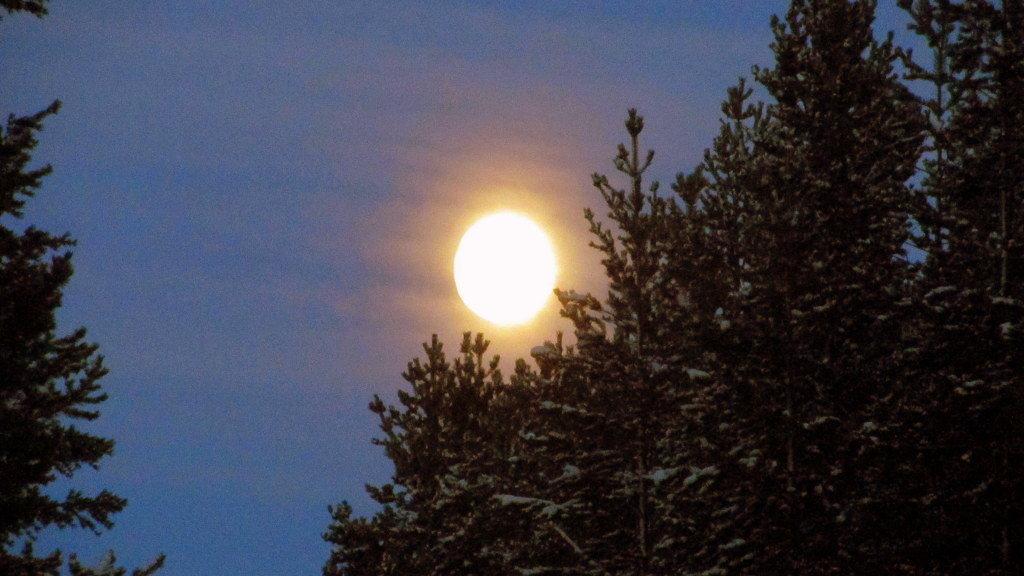 Луна - ночное маленькое солнце... - Галина Полина