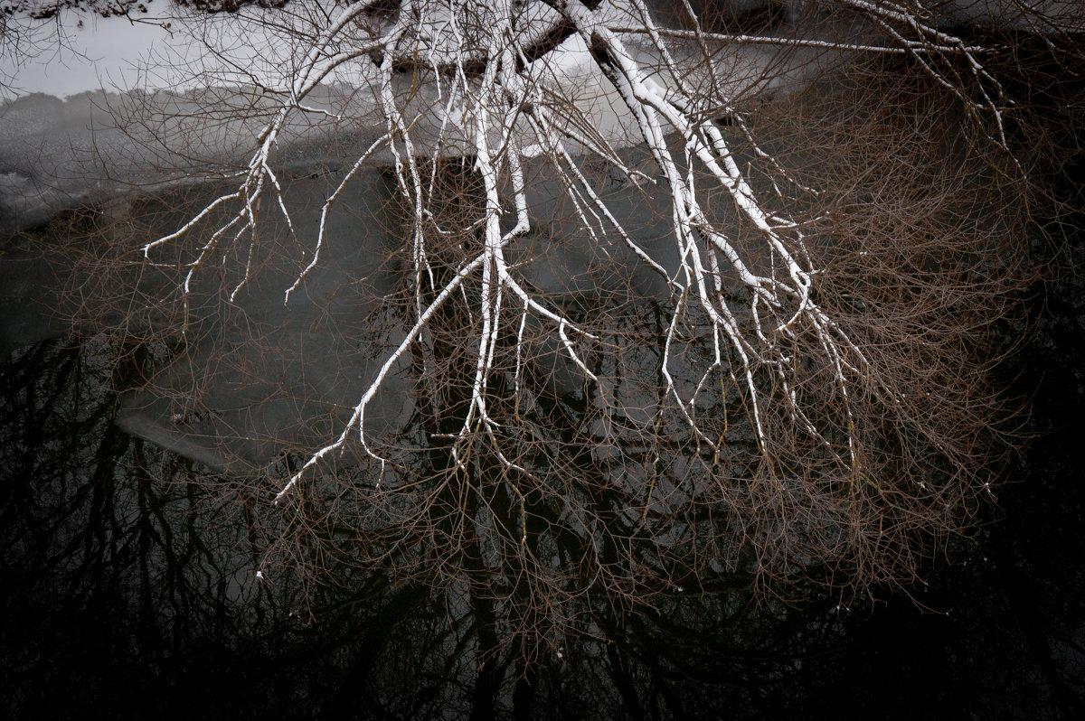 Костлявые руки холода - Alexander Petrukhin