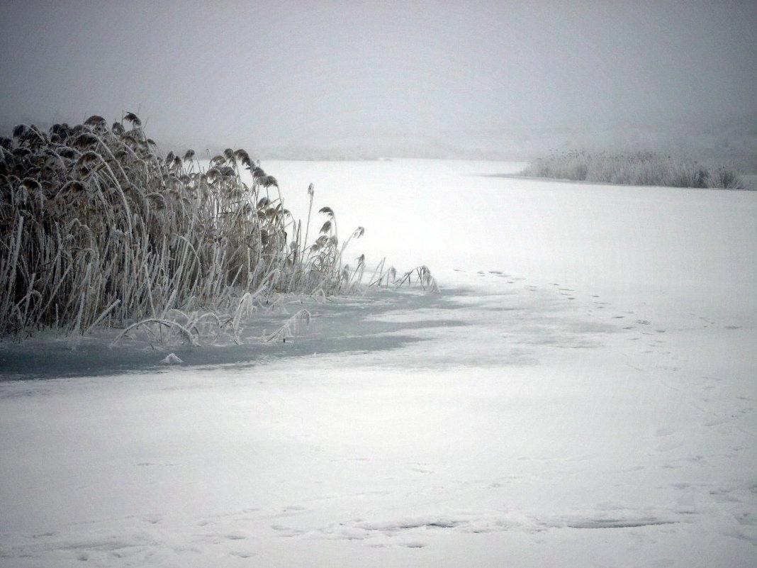 Зимняя река - mAri