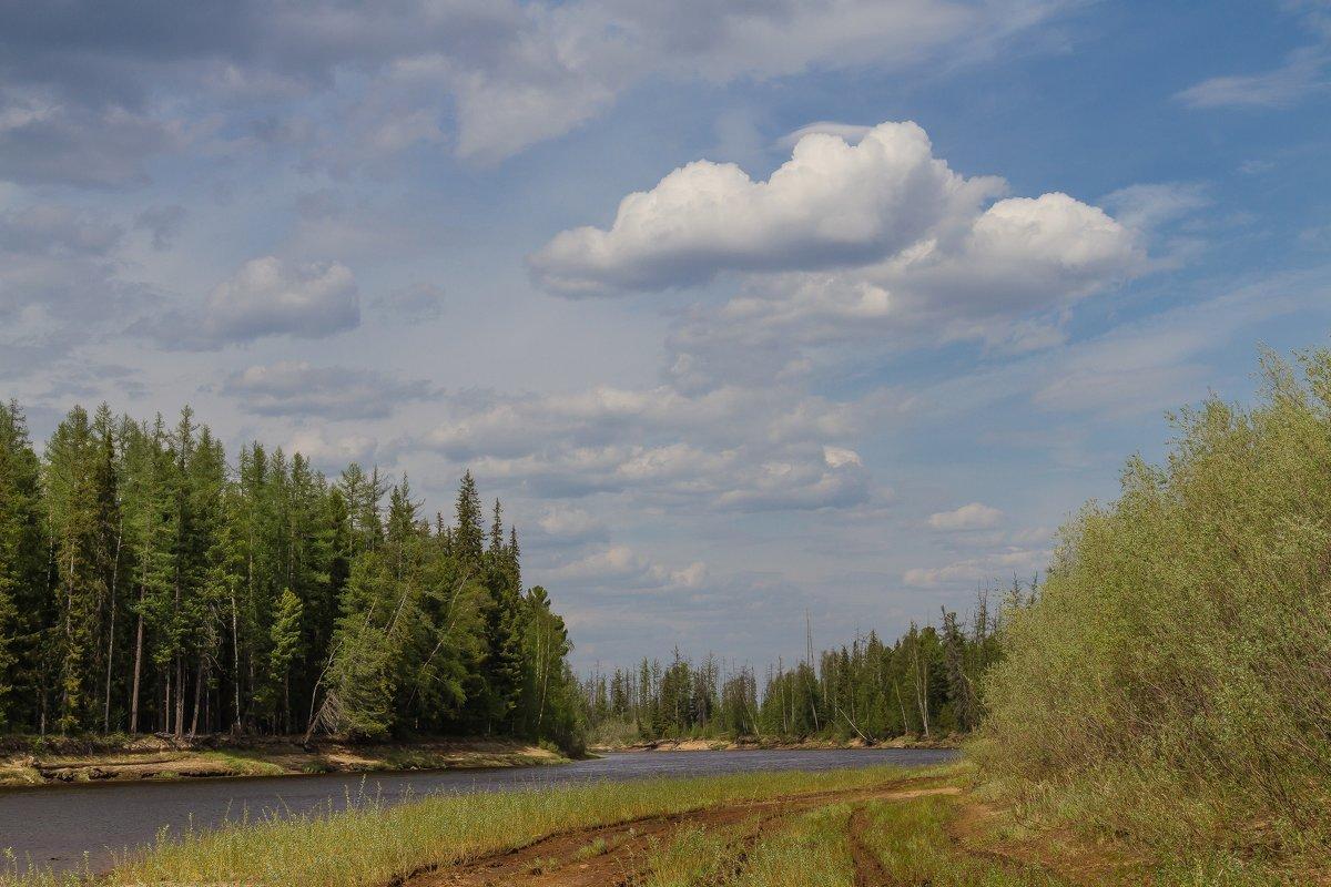 Прогулка по берегу Сибирской реки - Дмитрий Сиялов