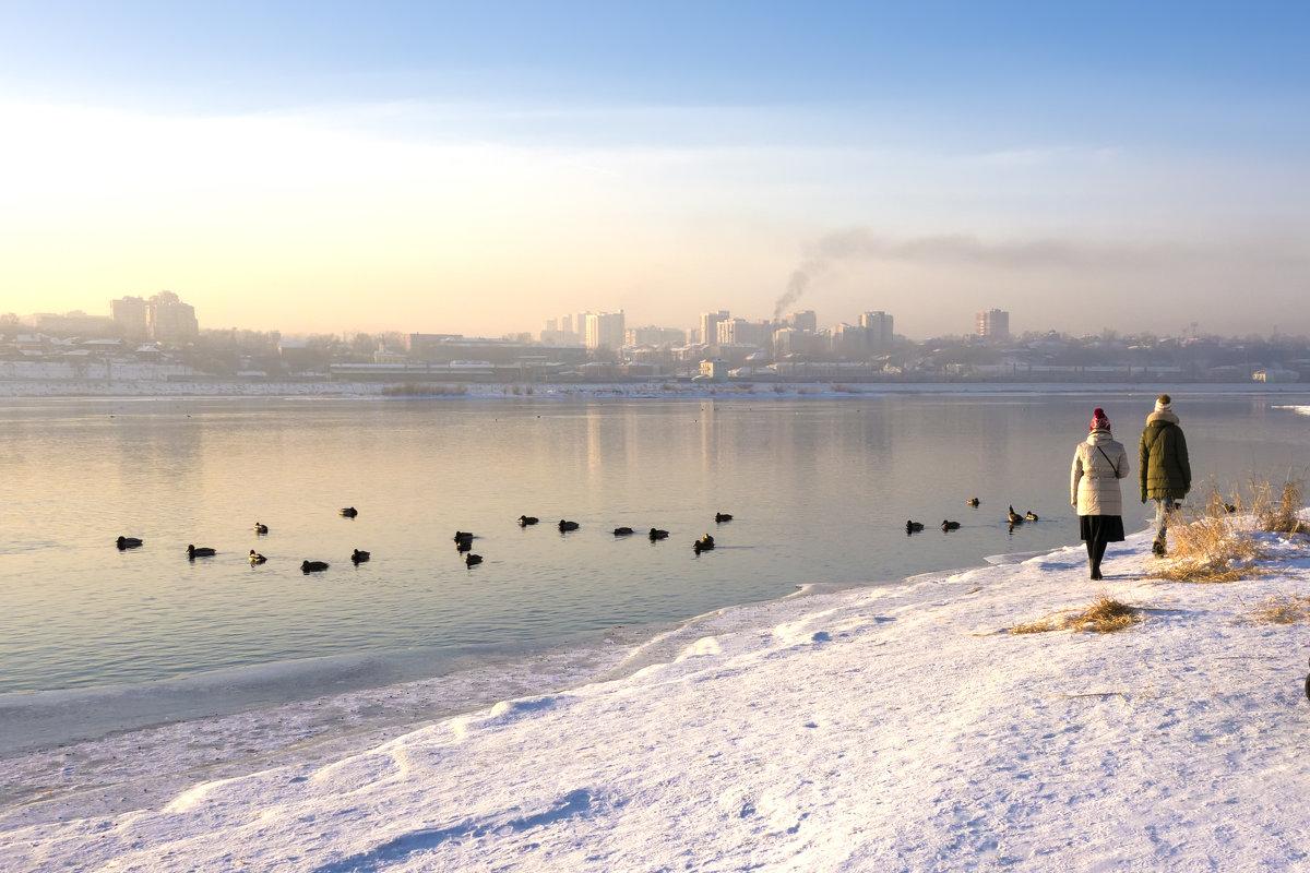 На зимнем берегу реки - Андрей Шаронов
