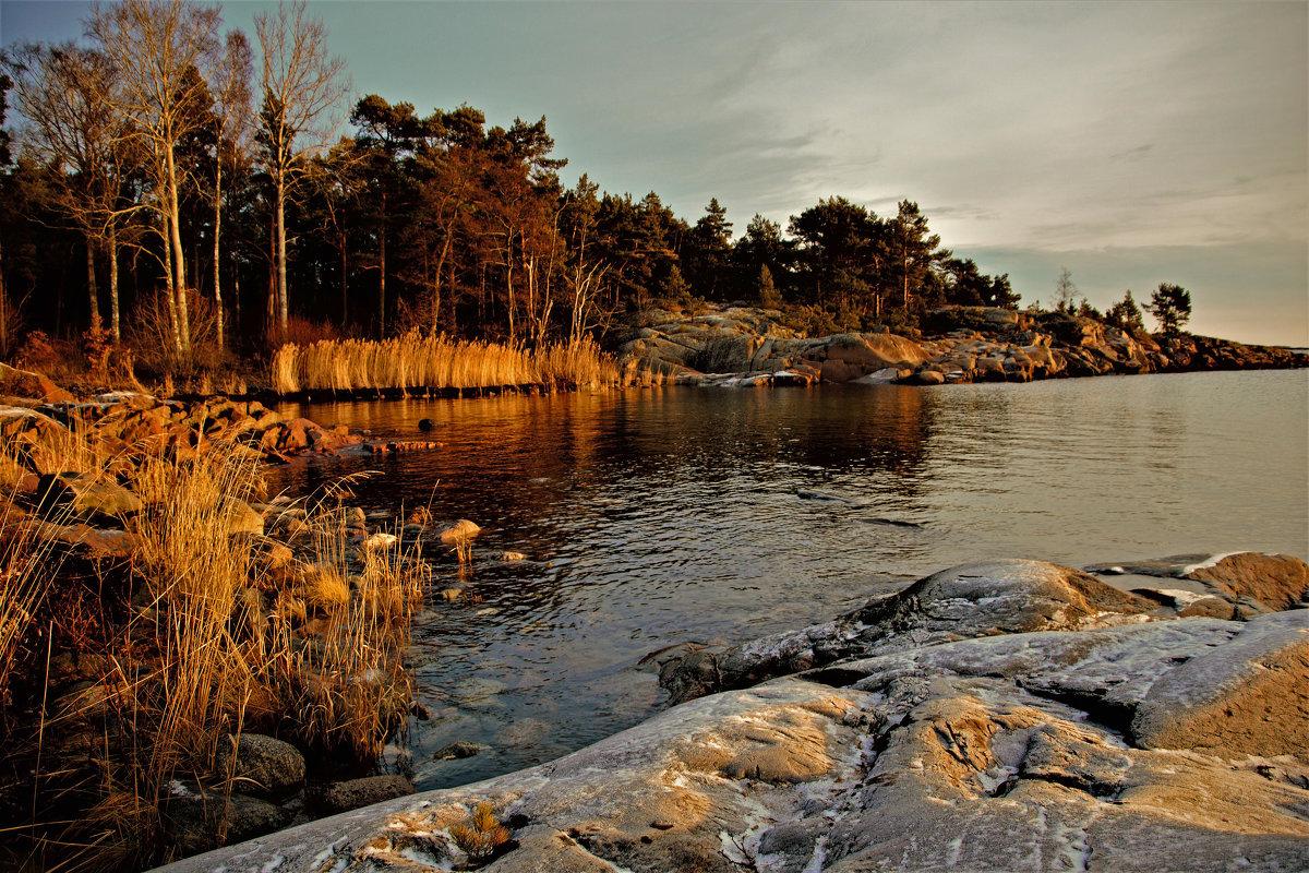 выход к Балтике - liudmila drake