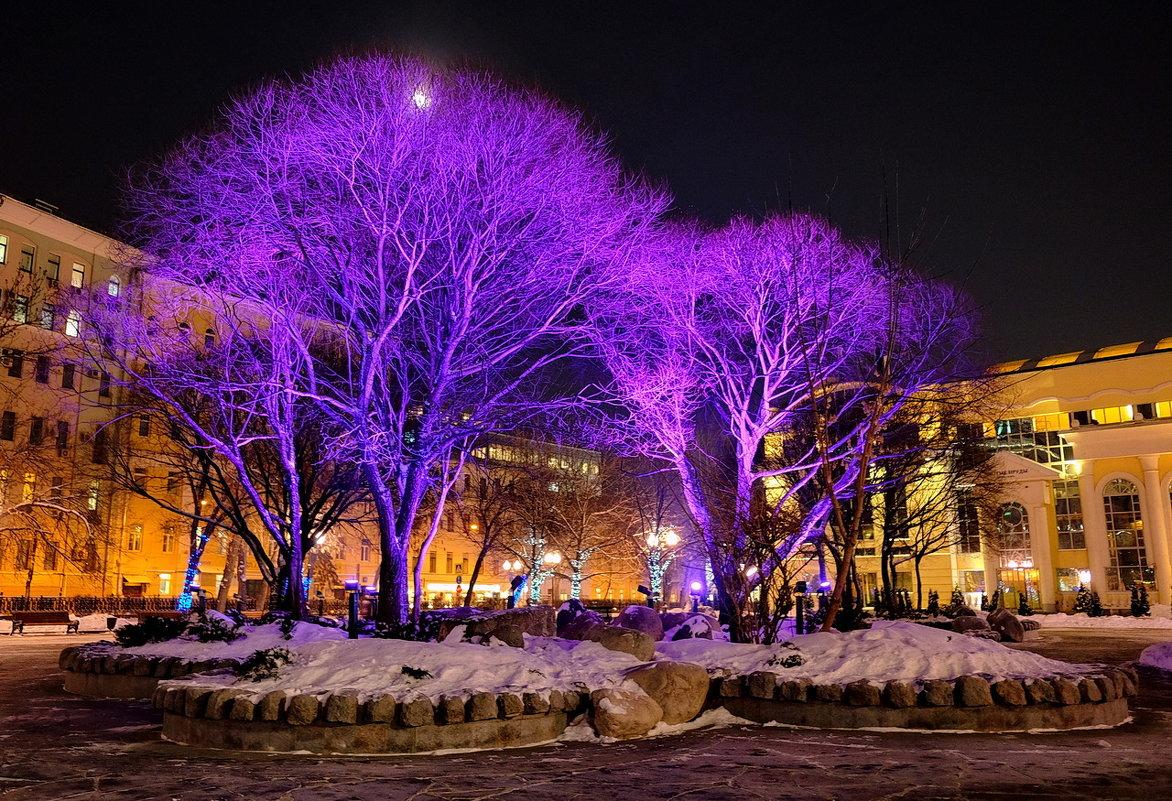 Праздничные дерева - Александр
