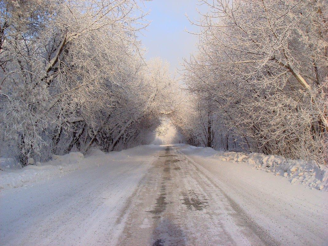 зимняя дорога - djangalina *