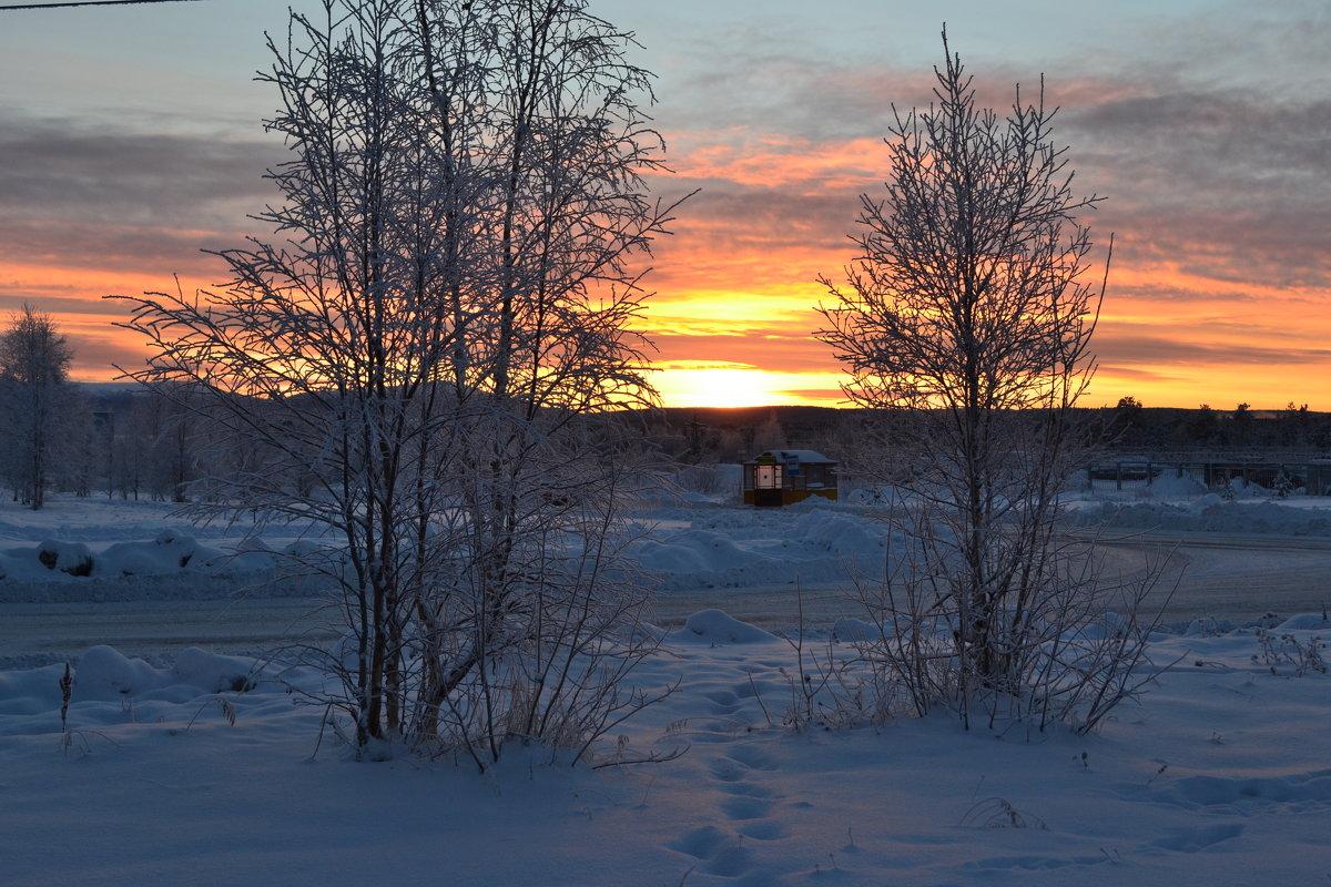 В морозном декабре - Ольга