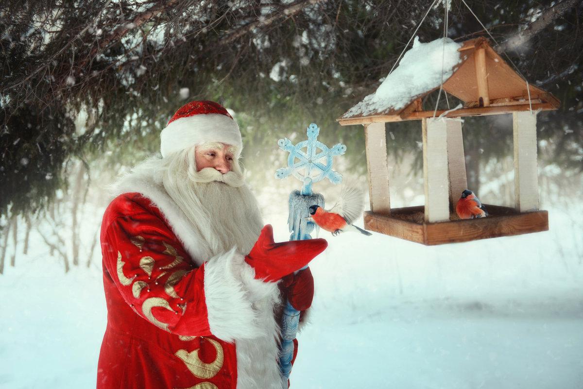 Дед Мороз существует! - Кристина Мащенко