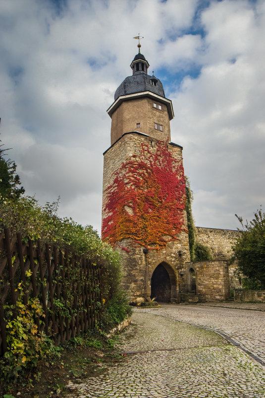 Башня - Дмитрий