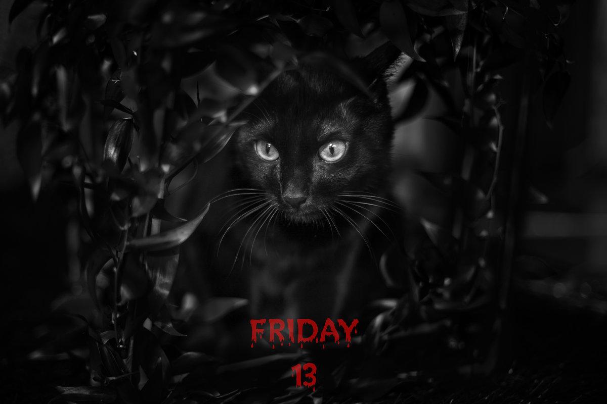 Friday 13 - Фотостудия Объективность