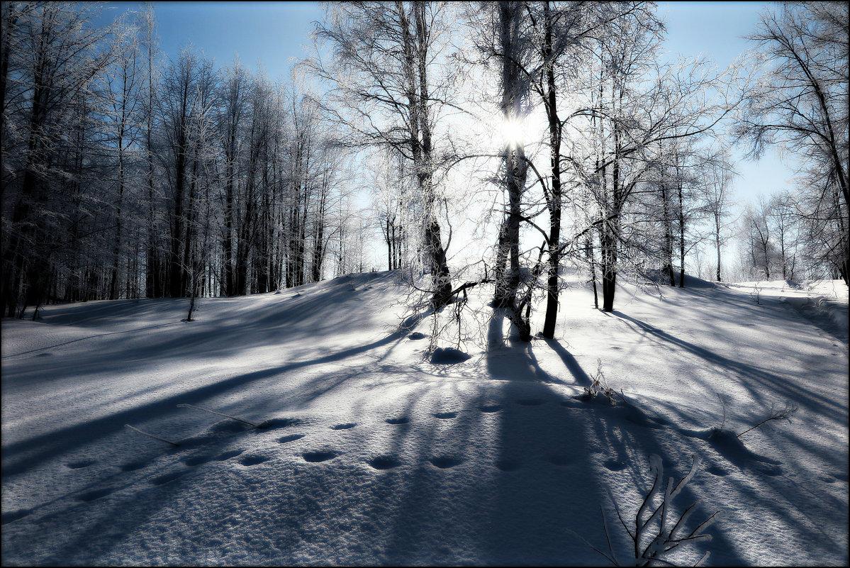 Зимний день - Leonid Rutov