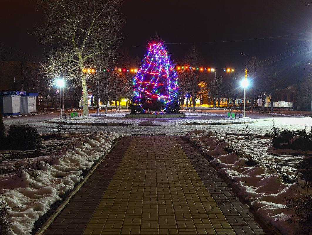 Новогодняя ёлка. - Бронислав Богачевский