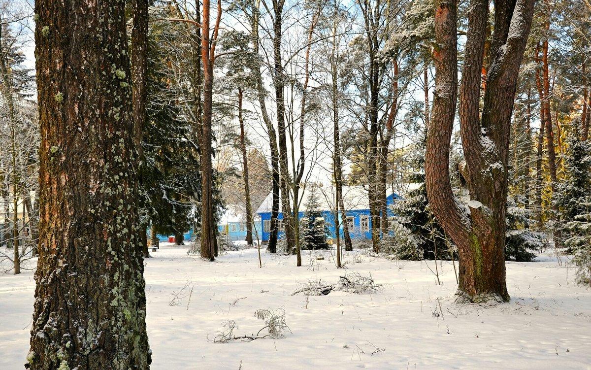 Детский лагерь в январе - Милешкин Владимир Алексеевич