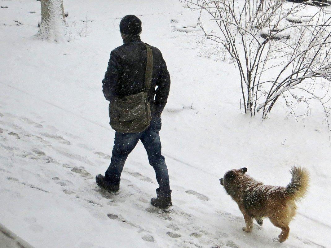 Рыхлый снег под ногами тает... - Татьяна Смоляниченко
