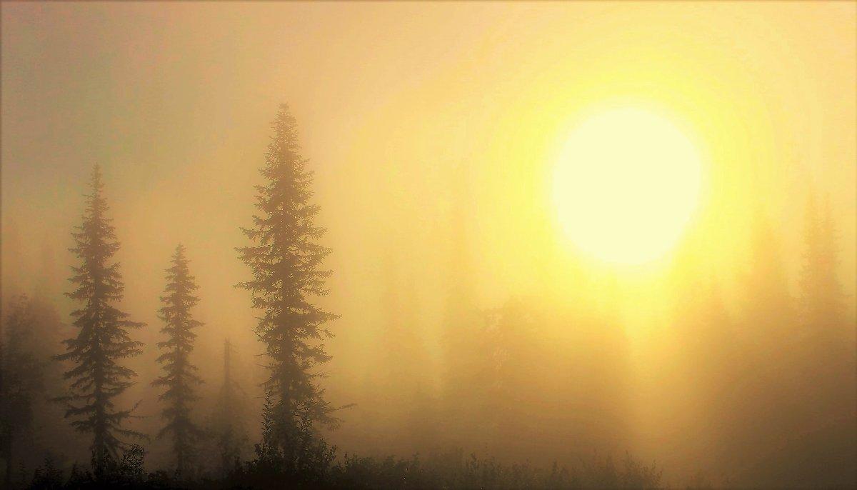 Солнце взошло - Сергей Чиняев